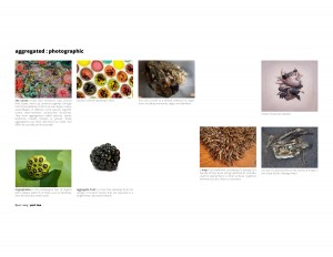 wordimage_assignment_02_research_refined-2